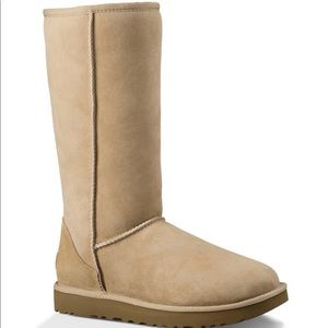 Tall Sand Color Uggs NWOT